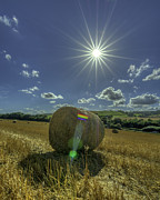 Harvest Time Prints - Harvest Sun Print by David Attenborough
