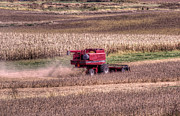 Combine Photos - Harvest by Thomas Danilovich