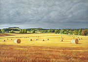 Hay Bales Paintings - Harvested Fields at Kilconquhar by Peter Breeden