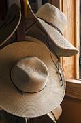 Lynn Palmer - Hat Rack