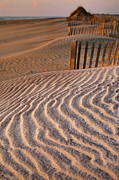 Hatteras Dunes Print by Steven Ainsworth