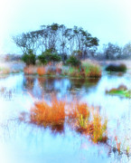 Abstract Art Prints Digital Art Framed Prints - Hatteras Wetlands on the Outer Banks Framed Print by Dan Carmichael