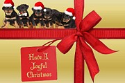 Puppies Digital Art - Have A Joyful Christmas Greeting Card  by Tracey Harrington-Simpson