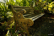 Garden Landscape Photo Posters - Have a Seat Poster by Cheryl Young