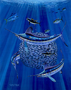 Striped Marlin Prints - Having a ball Off0078 Print by Carey Chen