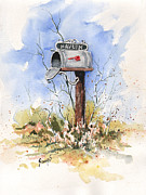 Mail Box Painting Framed Prints - Havliks Mailbox Framed Print by Sam Sidders