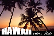 Buy Posters Online Digital Art - Hawaii Aloha State Poster by Peter Art Print Gallery  - Paintings Photos Posters