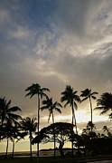 Cheryl Young - Hawaii Kai Morning