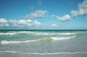 Charmian Vistaunet - Hawaii Tropical Beach