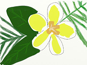 Hawaiian Tapestries - Textiles Prints - Hawaiian Plumeria Flower Print by Savvycreative Designs