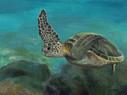 Hawaii Sea Turtle Paintings - Hawaiian Sea Turtle by Beth Wolfe
