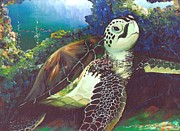 Ladys Island Framed Prints - Hawaiian Sea Turtle Framed Print by Linda Briggs