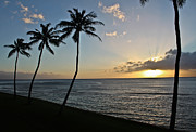Joann Copeland-Paul - Hawaiian Sunset