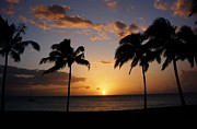 Palm Trees Prints - Hawaiian Sunset Print by Kurt Van Wagner