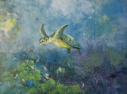 Hawkbill Turtle Feeding On Sponges Print by Nancy Gorr