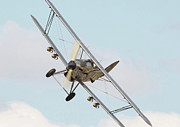 Biplane Acrylic Prints - Hawker Hind Acrylic Print by Pat Speirs