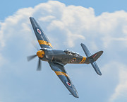 Steve Rowland - Hawker Sea Fury- #924