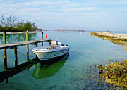 Nassau Grouper Prints - Hawks Nest marina Print by Carey Chen