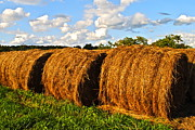Hay Bale Framed Prints - Hay Bale Close Up Framed Print by Robert Harmon