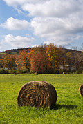 Hay Bales Digital Art Posters - Hay Bale In Country Field Poster by Christina Rollo