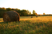 Sarah Yost - Hay Bales at Sunset