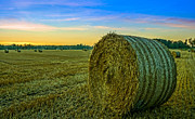 Alex Weinstein - Hay Bales before Dusk