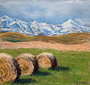 Hay Bales Pastels Framed Prints - Hay Bales in Alberta Framed Print by Fiona Graham