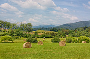Virginia Farm Framed Prints - Hay Bales in Farm Field Framed Print by Kim Hojnacki