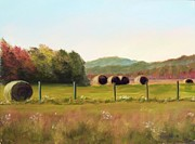 Iron Pastels Prints - Hay bales in the Cove Print by Joan Swanson
