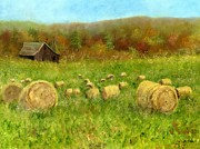 Bales Painting Posters - Hay Bales In The Meadow Poster by Vicky Watkins