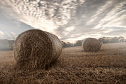 Hay Bales Digital Art Posters - Hay Bales in the Mist Poster by Anir Pandit