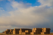Photography Prints Prints - Hay Bales Print by James Bo Insogna