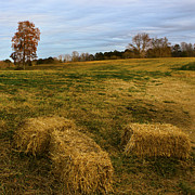 Canvas Photo Originals - Hay Bales by Michael Waters