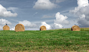 Tennessee Hay Bales Metal Prints - Hay Bales Metal Print by Steven  Michael