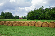 Tennessee Hay Bales Metal Prints - Hay Day Metal Print by Steven  Michael