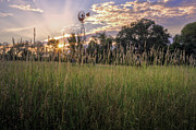 Light Rays Photo Prints - Hay Field Sunset Print by Bill  Wakeley