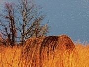 Shenandoah Valley Posters - Hay Roll in the Field Poster by Joyce  Kimble Smith