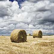 Haybale Framed Prints - Haybales in a field in England UK Framed Print by Jon Boyes