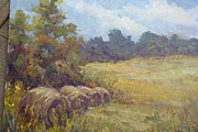 Hay Bales Pastels Framed Prints - Haybales in Ohio Framed Print by Mary Ann Davis