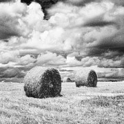 Haybale Framed Prints - Haybales UK Framed Print by Jon Boyes