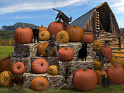 Bales Digital Art Posters - HayCats n Pumpkins Poster by Jennifer Schwab