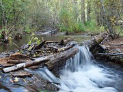 Fishing Creek Prints - Hayden Creek Falls Print by JFantasma Photography
