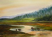 Wyoming Paintings - Hayden Valley Buffalo by Todd Derr