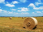 Haybale Photo Prints - Hayfield Print by Venus