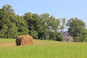 Haying Photos - Haying Season at Captain Eds Homestead by Penny Meyers
