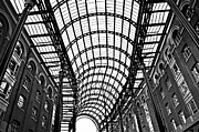 Arcade Framed Prints - Hays Galleria roof Framed Print by Elena Elisseeva