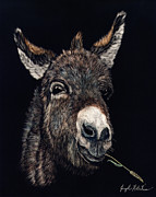 Donkey Mixed Media Prints - Hayseed Print by Joseph Robertson