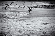 Buy Sell Photo Posters - HDR Black White BW Beach Ocean Seascape Birds Seagulls Photography Photo Picture Surfer Art Gallery  Poster by Pictures HDR