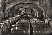 Wine Cellar Photo Originals - He Always Had Some Mighty Fine Wine by William Fields