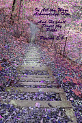 He Will Direct My Path Print by Lorna Rogers Photography